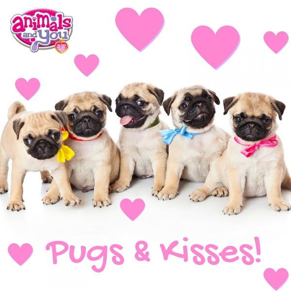 pugs and kisses meme